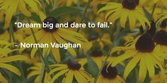"""""""Dream big and dare to fail.""""   – Norman Vaughan"""