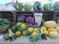 Gettysburg Farmers Market -fresh produce made by our neighbors in Adams County!