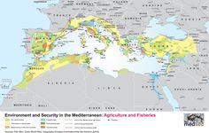 This report aims to describe how environmental deg- radation will affect human security in the Mediterra- nean space,...