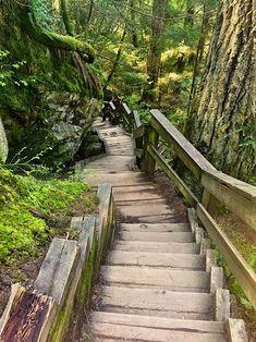 Sarah's Journey to Reiki. Read about Sarah's inspirational journey along her spiritual path. Spiritual Path, Miracles Happen, Reiki, Railroad Tracks, Paths, Spirituality, Journey, Inspirational, World