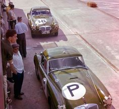 British Motor Corporation (BMC) had three MG A's plus a practice car at Sebring in 1960 Two of the three entries would finish. BARC boys photo.