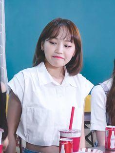 Kpop Girl Groups, Kpop Girls, Sakura Miyawaki, Hip Hop Art, Japanese Girl Group, Korean Girl, Dancer, Puns, Meme