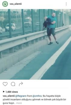 Instagram 'vox_silentii' / Good Man saves dog on Interstate (between fence & guard rail)