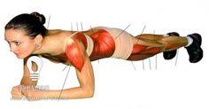 Tonifique os seus músculos sem se mexer!