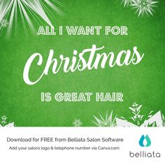 All I want for Christmas is great hair....  Get inspired by our free festive quotes for your salon