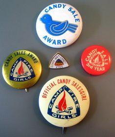 Camp Fire and Blue Bird pins