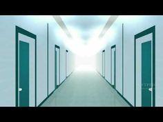 Avs video converter version 5 33 with crack Corridor, Buildings