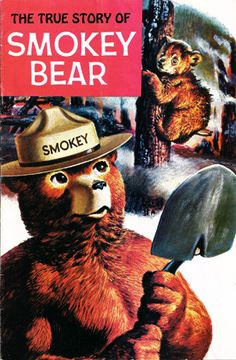 The True Story of Smokey Bear 1969 Comic Book - Western Pub US Forestry Service.