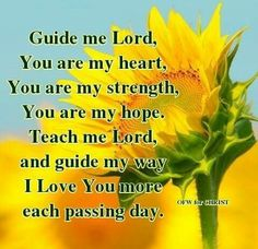 Guide Me♡