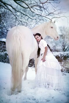 Beautiful white horse in the snow with little girl in a white dress hugging him…