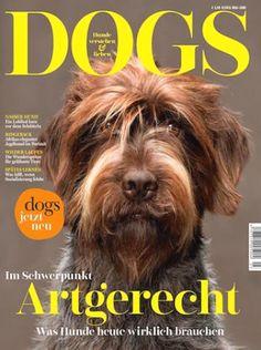 #dogsmagazin jetzt 1 Jahr für eff. 10,40€ statt 34,50€ 👉 www.abosgratis.de/blog 🐶 #Dogs #dogmagazine #dogfriends #dogsofinstagram #dogstagram #dogsofinsta #dogsatwork #hunde #hund #hundezeitschrift #hundebaby #hundeliebe #hundezubehör #hundekind #hundeblog #haustier #haustiere #hundeblogger #hundetipps #hundeerziehung #hundeernährung #zeitschrift #zeitschriften #zeitschriftenliebe #lesen #lesezeit #lesetips #magazin #magazines