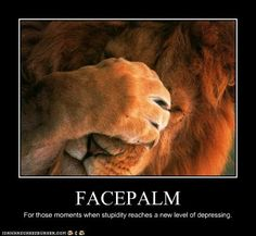 Funny Animal Captions - Animal Capshunz: Even Lions Have These Moments