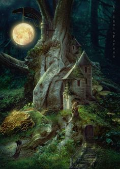 Forest Elf, Night Forest, Magic Forest, Forest House, Forest Fairy, Fairy Land, Dark Forest, Mystical Forest, Fantasy Forest