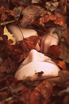 the fallen leaves cover her beautiful body which laid on mother earth