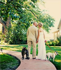 Cute wedding picture with dogs
