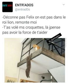 Roi Felix humour blague rire amusant drole m+ Funny Tweets, Funny Memes, Funny French, How To Speak French, Facebook Humor, Good Jokes, Funny Pins, Best Memes, Laughter
