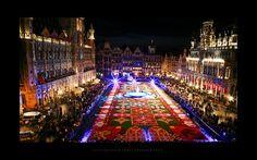 Tapete de flores Brussel - 2010. | Flickr – Compartilhamento de fotos!