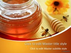 Free Honey PPT Template