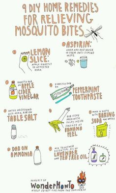 mosquito bites remedies - I'll let you know what works.