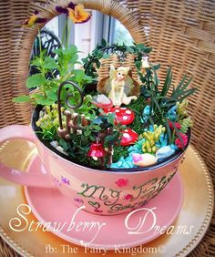 Fairy garden in a teacup. I would LOVE to do this...wish I could find more extra tiny plants!!