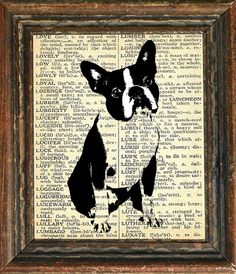 Boston Terrier print- love it!