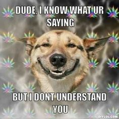 It helps with real talk. | 23 Reasons Smoking Weed Is Good For You
