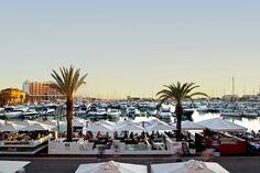 "Vilamoura Marina elected ""Best International Marina 2015"" by The Yacht Harbour Association - via Yellow & Finch 16.01.2015 | Vilamoura Marina has held, since for many years, the 5 anchors maximum score by TYHA, The Yacht Harbour Association, with the support of the British Marine Federation."