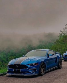 Ford Mustang, Ford Mustangs