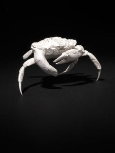 View Finger Crab by Dorothy Cross on artnet. Browse more artworks Dorothy Cross from Pangolin London. 3d Things, Irish Art, Artist At Work, Gcse 2017, Sculptures, Black And White, Anatomy, Artwork, Finger