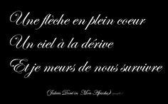 Une flèche en plein coeur, un ciel à la dérive et je meurs de nous survivre (Julien Doré, Mon Apache)