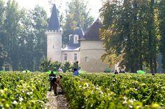 Bordeaux Tourism: 221 Things to Do in Bordeaux, France | TripAdvisor