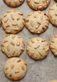 Pignoli (Pine Nut Cookies)   Surprise your Gluten-Free friends with this Saveur Magazine favorite. Chewy, nutty, delicious.  Recipe - Saveur.com