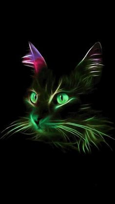 Cat Rainbow Wallpaper …By Artist Unknown… Cat Rainbow Wallpaper … Par Artiste inconnu … Rainbow Wallpaper, Cat Wallpaper, Animal Wallpaper, Wallpaper Wallpapers, Colorful Animals, Cute Animals, Beautiful Cats, Animals Beautiful, Neon Cat