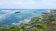 Heading back over to Perth for a work conference this week hoping to explore this amazing island again on my days off.  #travel #getaway #trip #amazing #outdoors #travelaus #rottnestisland #fun #greatday #happiness #travelwa #fitness #athlete #outsideisfree #perth #cyclist #ocean #quokka #rottness #roadcycling #bluewater #www17