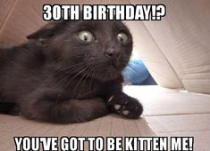 Find very good Jokes, Memes and Quotes on our site. Keep calm and have fun. Funny Pictures, Videos, Jokes & new flash games every day. 30th Birthday Meme, Singing Happy Birthday, Que Horror, The Son Of Man, Cat Behavior, Work Memes, Good Jokes, Have A Laugh, Horror Films