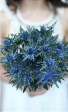 blue thistle bouquet - Google Search