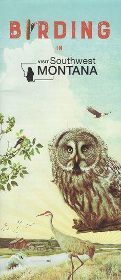 Montana, Owl, Bird, Movie Posters, Animals, Flathead Lake Montana, Animales, Animaux, Owls