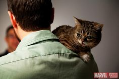 You can now count Lil Bub as another fan of the Marvel Universe! The adorable Lil Bub and her human Jonathan stopped by Marvel HQ recently to check out SAVAGE WOLVERINE #1 and get some one-on-one time with Logan! Check out the latest blog entry by Agent M to get the full scoop on Lil Bub's visit and see more exclusive photos!    And don't forget to pick up SAVAGE WOLVERINE #1 to check out Lil Bub's awesome AR video…