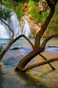""" Havasu Creek Waterfall, Arizona by Suzanne Mathia"""