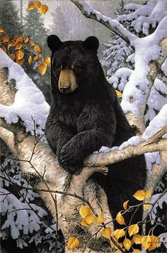 Black bear painting by wildlife artists Jerry Gadamus. I'm framing it for the cabin! Bear Paintings, Wildlife Paintings, Wildlife Art, Indian Paintings, Canvas Paintings, Abstract Paintings, Ours Grizzly, Grizzly Bears, Animals And Pets