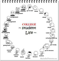 college life funnies | College Life Quotes Funny