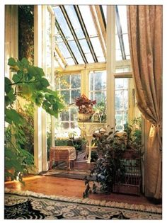 Victorian Style Houseplant Arrangement