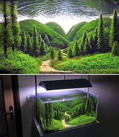 Terrarium Concept<<<< excuse me, that's an ~aquarium~ Planted Aquarium, Aquarium Terrarium, Aquarium Aquascape, Aquarium Fish Tank, Fish Tank Terrarium, Aquarium Stand, Freshwater Aquarium Fish, Aquarium Landscape, Nature Aquarium