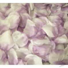 lavender rose petals mixed with another color for 2 flower girls