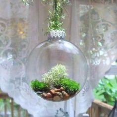 Terrarium ornaments | The Wallflower | an SFGate.com blog