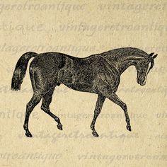 Printable Horse Digital Image Antique Horse Clipart Farm