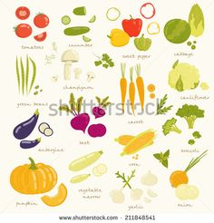 stock-vector-assorted-vegetable-vector-illustration-tomato-cucumber-pepper-cabbage-broccoli-cabbage-211848541.jpg (450×470)
