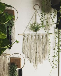 """202 Likes, 7 Comments - Nicole A (@ms_vintage_nicole) on Instagram: """"Have you entered our giveaway!?? You will win this wall hanging and airplant from me! this…"""""""