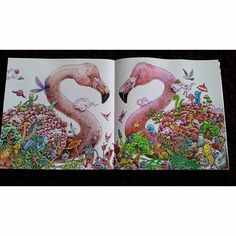 colorindolivrostop @colorindolivrostop Página dupla níve...Instagram photo | Websta (Webstagram)