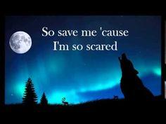 Owl City - Wolf Bite (Lyrics) I AM SO DONE. THIS IS ANGELIC.